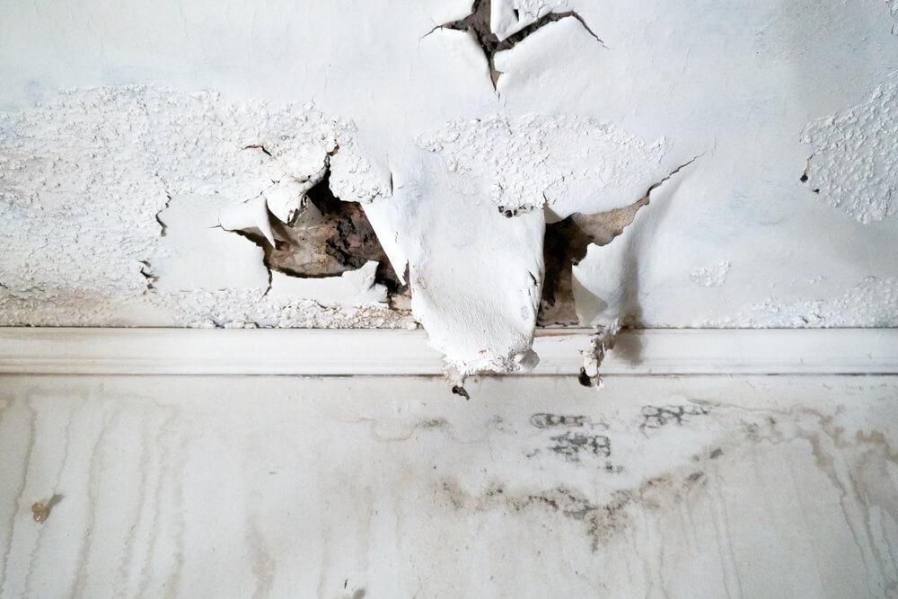 איזה איום חמור במיוחד יכול להיות על הבית שלכם?